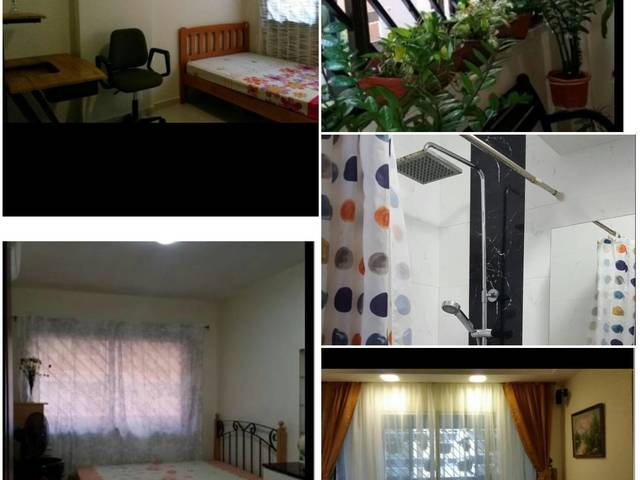 Room for rent with TV @Tampines 2 Common Room for Rent