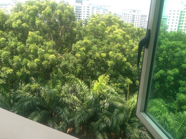 Common Room Available For Rent  near TPE, Punggol