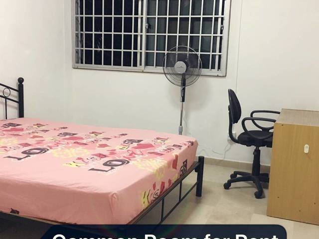 Common Room for rent@Tiong Bahru($800 for 2pax)