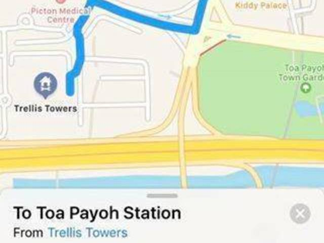 Toa Payoh condo Trellis tower room for rent