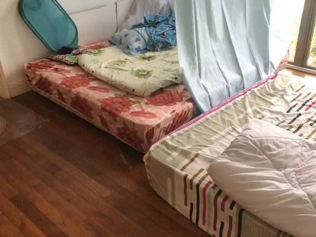 Find a female to share master room