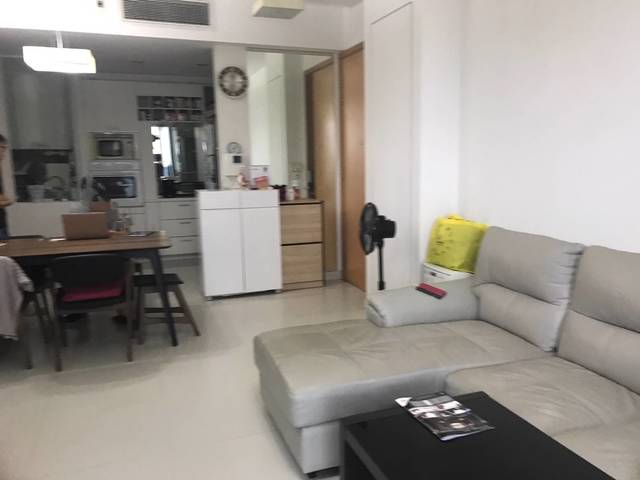 2 Bedroom Apt Opp Dhoby Ghaut MRT (near Somerset / Orchard)