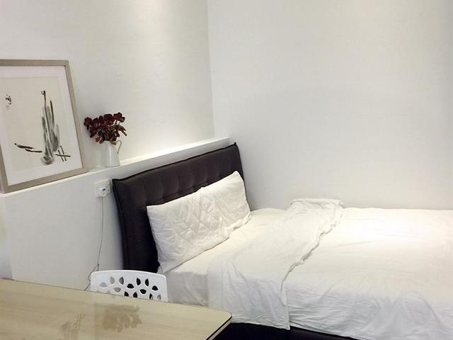 Individual 1-bedroom apartment on landed! Loft unit. High Ceiling
