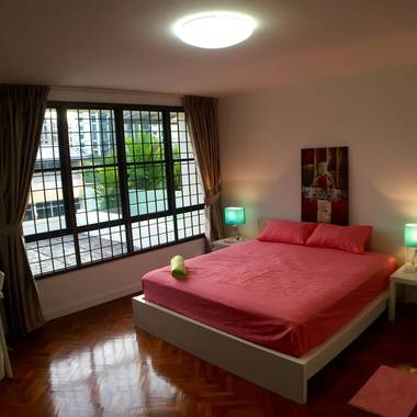 Simei / Expo / SIA training centre/ Airport / Changi business Park - Master Bedroom