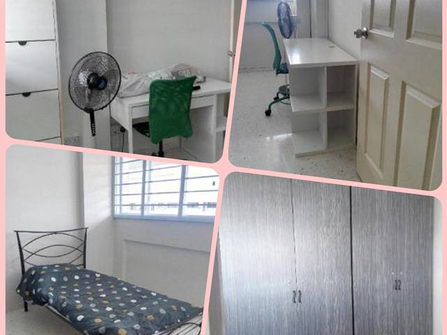 Spacious common rooms for rent